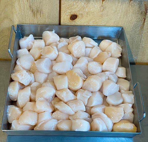 10/20 Maine Sea Scallops