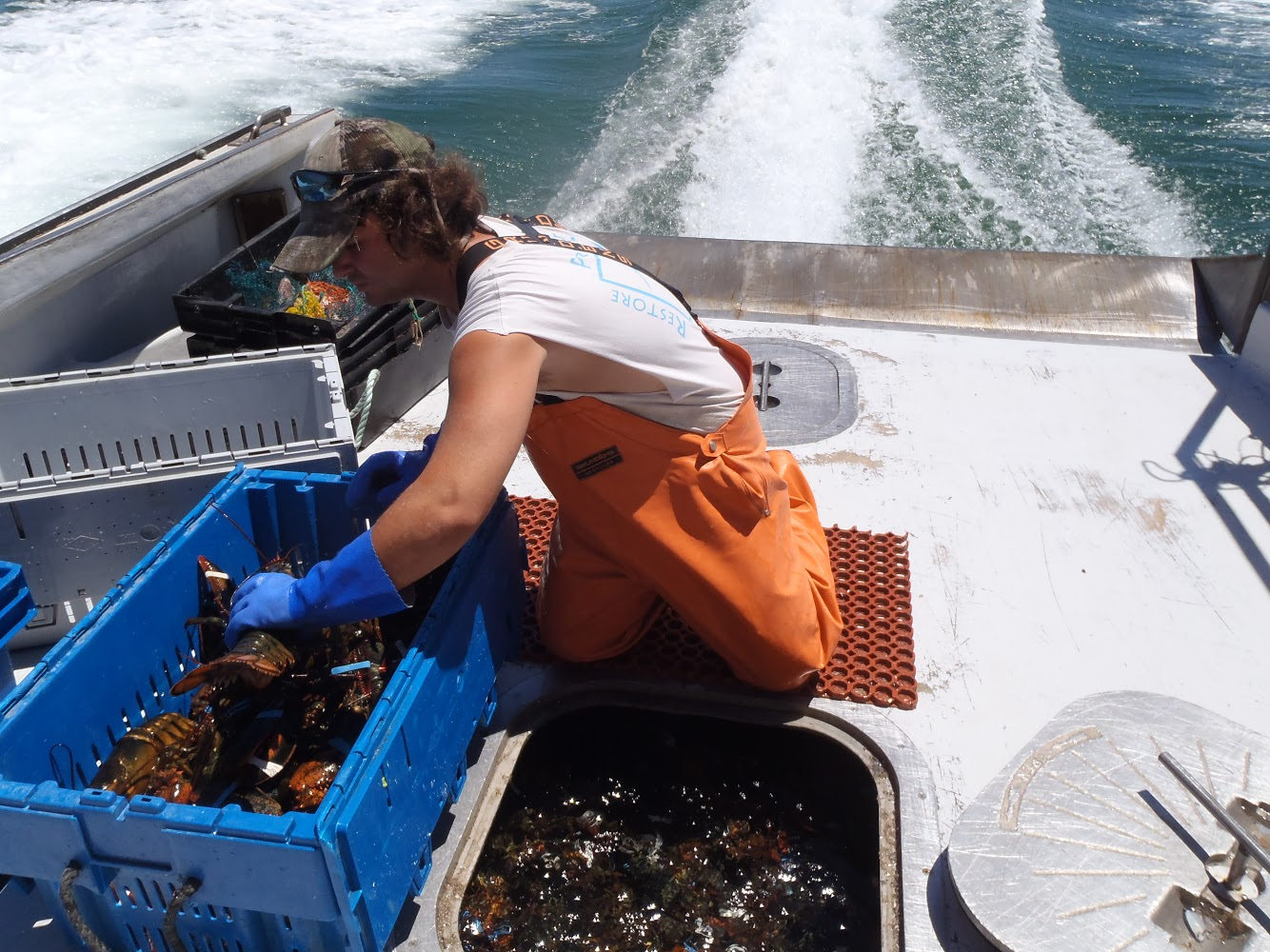 F/V: Time Bandit with Lobsters in the Hold