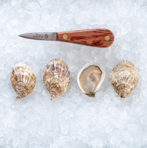 Ocean Kiss Oysters (ME)