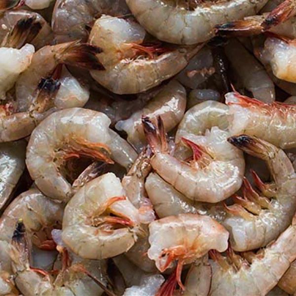 Fresh 16/20 Shell-on Gulf Shrimp
