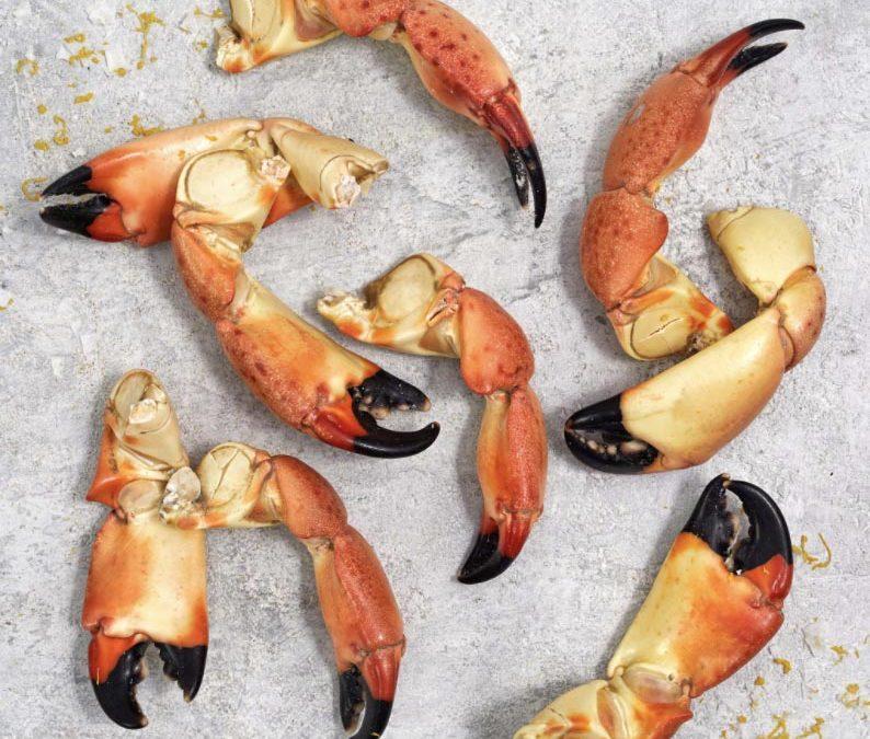 Florida Stone Crab Claws